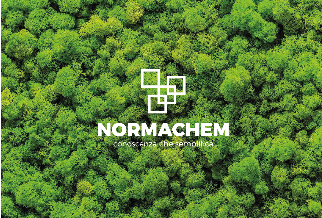 Catalogo Normachem