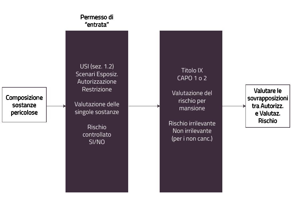 Autorizzazione REACH - Figura 1